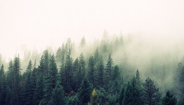 Featured Image Blog 2 Landscape