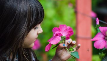 A girl inspects a bright pink flower.